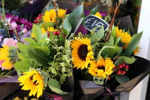 Scarecrow Flowers_2673