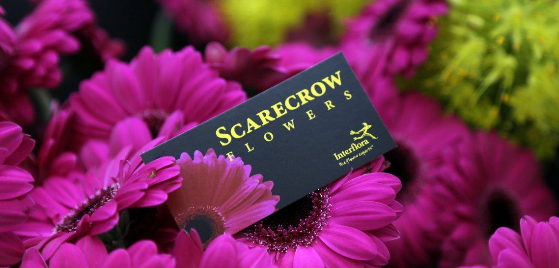 Scarecrow Flowers_2731