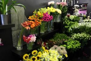 Scarecrow Flowers_2771